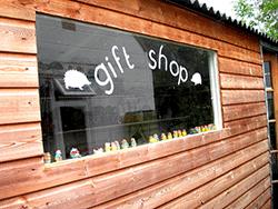 hedgehog-care-gift-shop