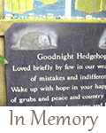 hedgehog-care-memorial